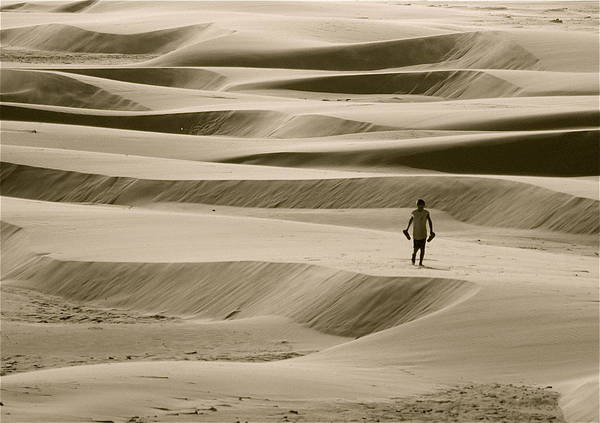 Scenic Art Print featuring the photograph Sand Walker by Mark Lemon