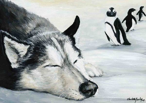 Siberian Huskey Art Print featuring the painting Siberian Huskey by Charlotte Yealey