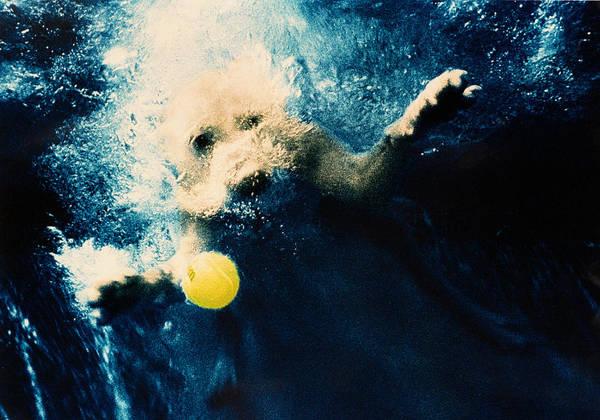 Dog Art Print featuring the photograph Splashdown by Jill Reger