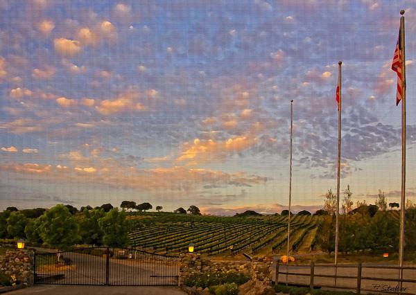 Clouds Art Print featuring the photograph Sunset At Vineyard by Patricia Stalter