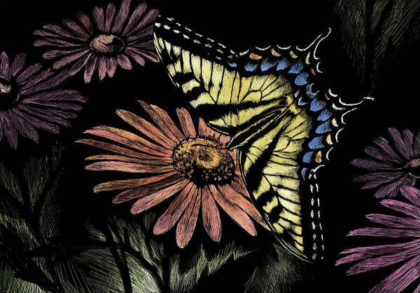 Butterfly Art Print featuring the drawing Tiger Swallowtail by Laurie Musser
