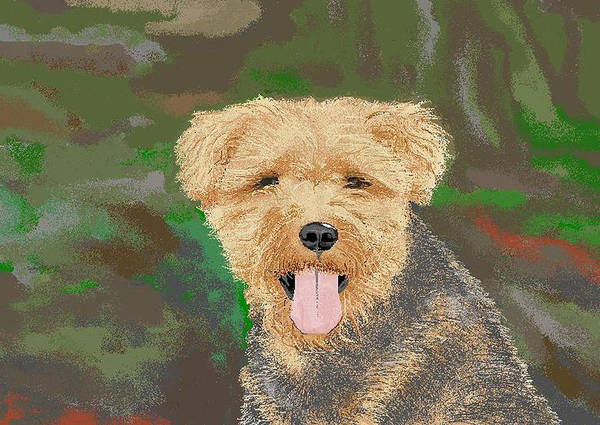 Dogs Art Print featuring the digital art Tucker The Welsh Terror by Carole Boyd