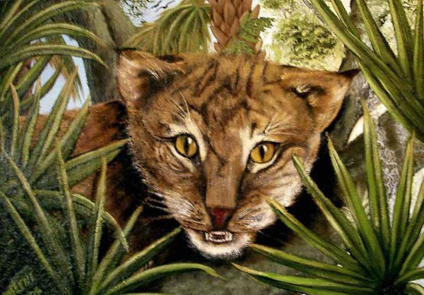 Bobcat Art Print featuring the painting Watching Floridabobcat by Darlene Green