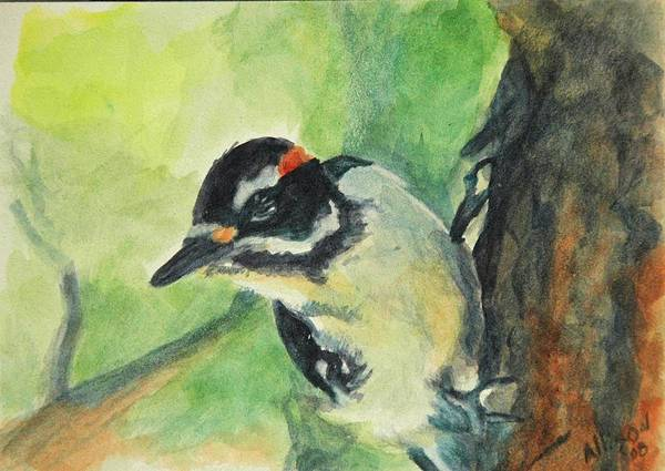 Wildlife Art Print featuring the painting Woodpecker by Stephanie Allison