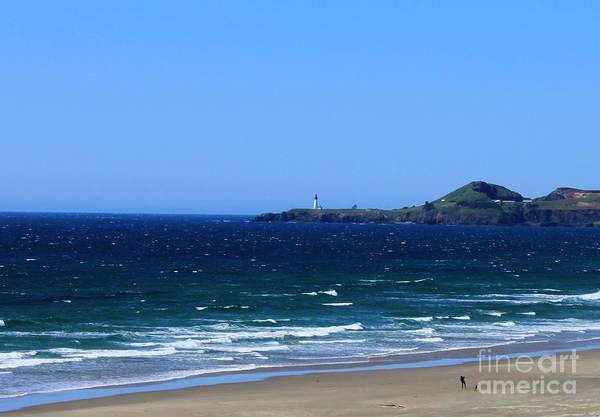 Yaquina Head Art Print featuring the photograph Yaquina Head by Erica Hanel