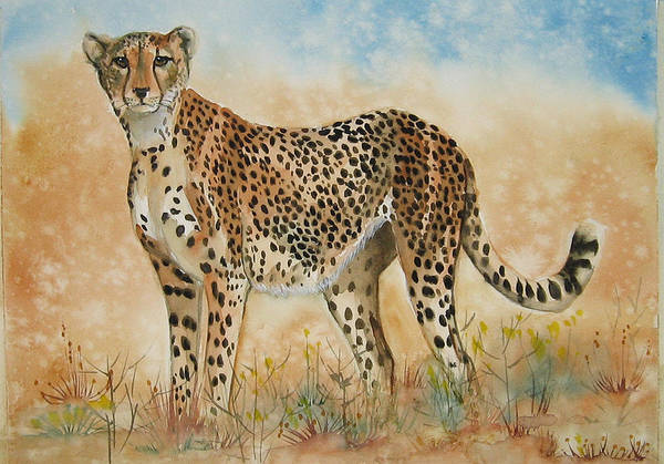 Cheetah Art Print featuring the painting Cheetah by Gina Hall