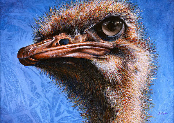 Ostrich Art Print featuring the print Fugley by JoLyn Holladay