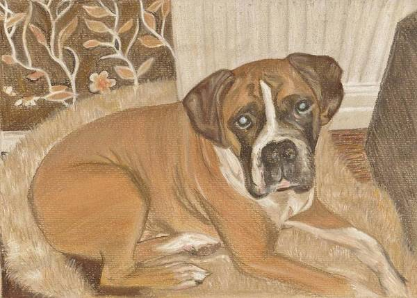 Boxer Dog Art Print featuring the painting Boxer Dog George by Faye Symons