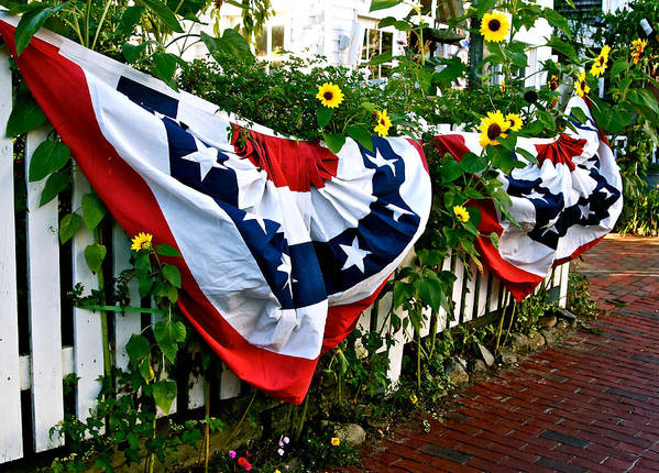 Bunting Art Print featuring the photograph Enjoy The Day by Ira Shander