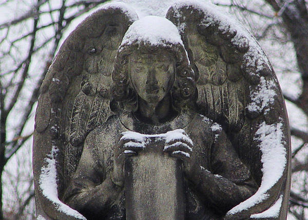 Winter Art Print featuring the photograph Frosted Stone Angel by Gothicrow Images