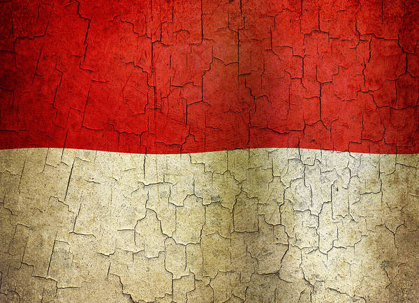 Aged Art Print featuring the digital art Grunge Indonesia Flag by Steve Ball