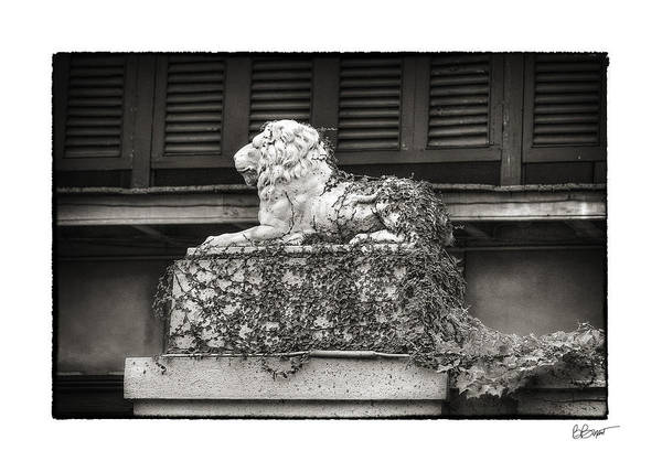 New Orleans Art Print featuring the photograph Guardian In Black And White by Brenda Bryant