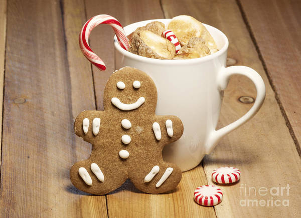 Baked Art Print featuring the photograph Hot Chocolate Toasted Marshmallows And A Gingerbread Cookie by Juli Scalzi