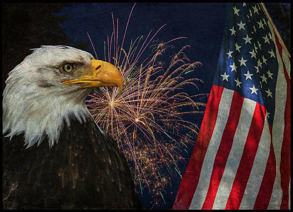 Independence Day Art Print featuring the photograph Independence Day by Angie Vogel