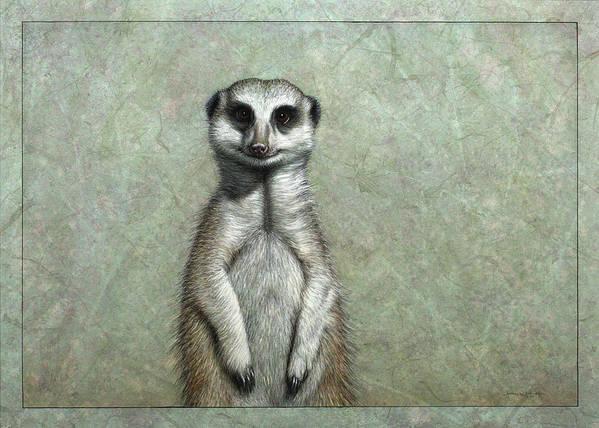 Meerkat Art Print featuring the painting Meerkat by James W Johnson