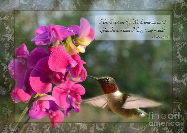 Nature Art Print featuring the photograph Sweet Pea Hummingbird Iv With Verse by Debbie Portwood