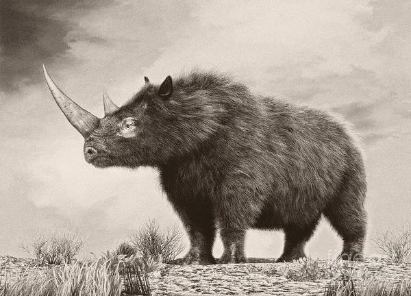Horizontal Art Print featuring the digital art The Woolly Rhinoceros Is An Extinct by Philip Brownlow