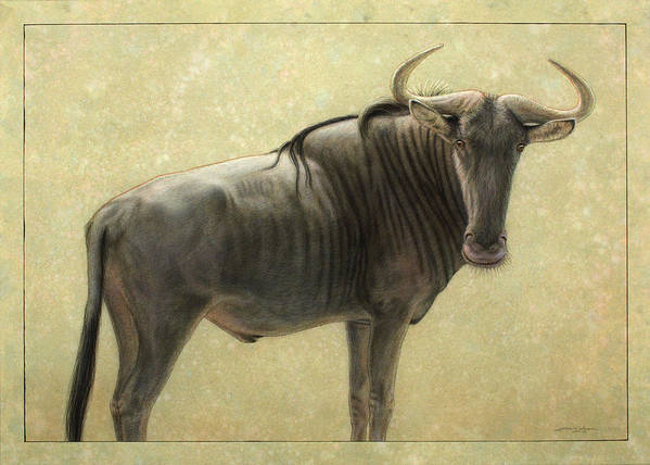 Wildebeest Art Print featuring the painting Wildebeest by James W Johnson