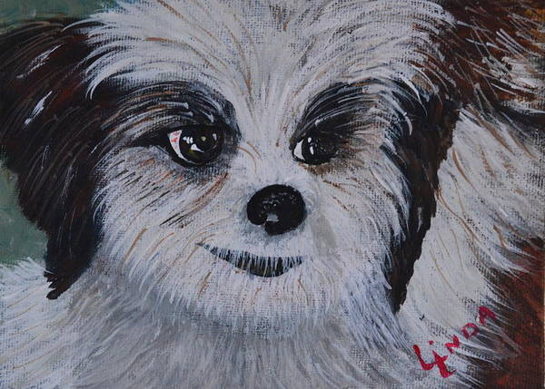 Shih Tzu Art Print featuring the painting Shih Tzu by Linda Larson