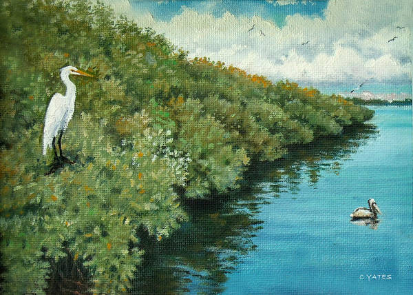 Florida Art Print featuring the painting Mangroves 2 by Charles Yates