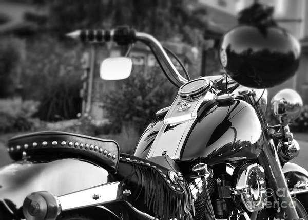 Motorcycle Art Print featuring the photograph Bike Me Too by Traci Cottingham