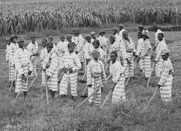 History Art Print featuring the photograph Juvenile Convicts At Work In The Fields by Everett