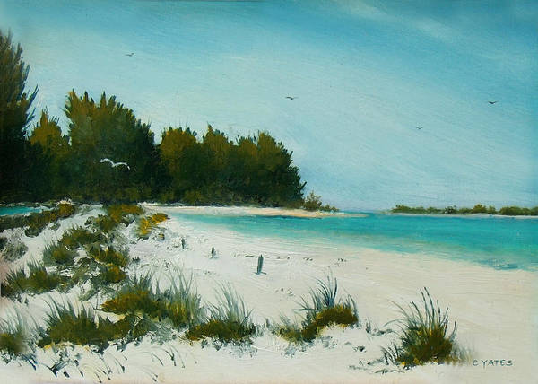 Florida Art Print featuring the painting Anna Maria Beach by Charles Yates
