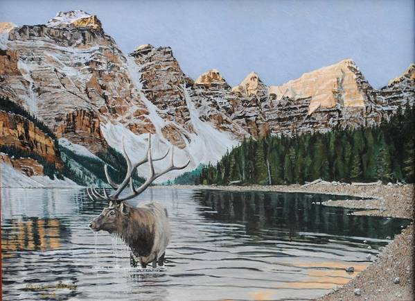 Banff Art Print featuring the painting Elk In Moraine Lake by Paul Larson