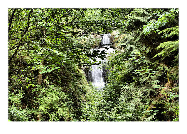 Waterfall Art Print featuring the photograph A Secret Place by J D Banks