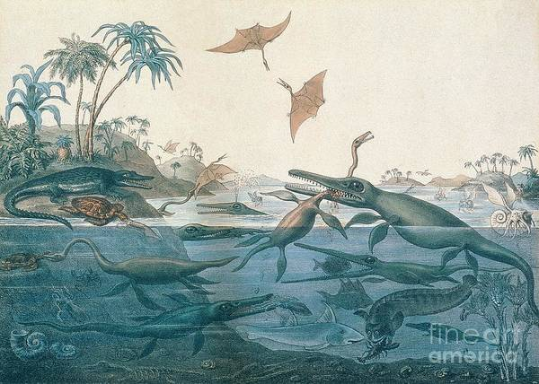 Duria Antiquior (ancient Dorset) Depicting A Imaginative Reconstruction Of The Life Of The Jurassic Seas Art Print featuring the drawing Ancient Dorset by Henry Thomas De La Beche