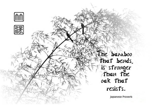 Bamboo Art Print featuring the photograph Bamboo Tree With Two Birds Bends In The Wind by Yali Shi