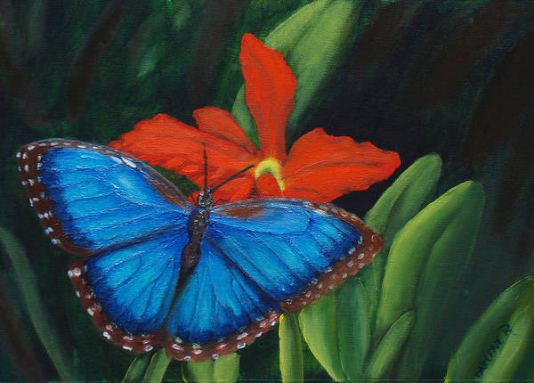 Butterfly Art Print featuring the painting Blue Morph by Darlene Green