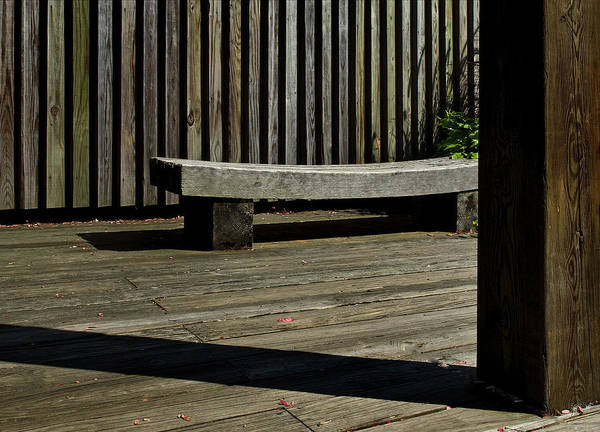 Bench Art Print featuring the photograph Curved Bench by Murray Bloom
