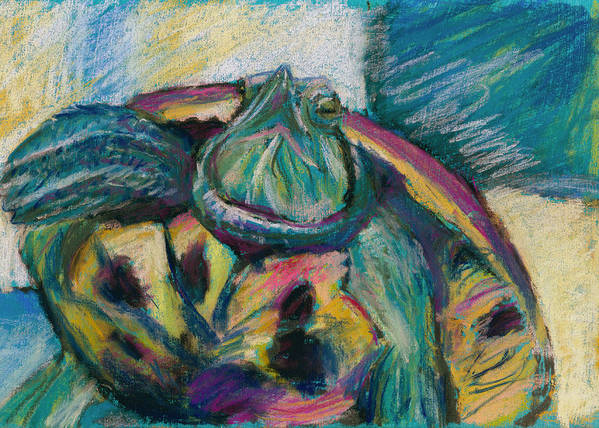 Turtle Art Print featuring the drawing Drama Queen by Gail Wartell
