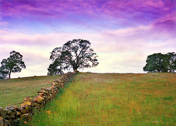 Landscape Art Print featuring the photograph Foothill Sunrise by Edward Mendes