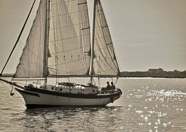 Gaff Rigged Ketch Art Print featuring the photograph Gaff Rigged Ketch Cutter Sailing The Charleston Harbor by Dustin K Ryan