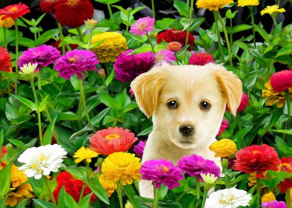 Puppy Art Print featuring the digital art Golden Puppy In The Zinnias by Bob Nolin