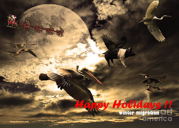 Wingsdomain Art Print featuring the photograph Happy Holidays . Winter Migration by Wingsdomain Art and Photography
