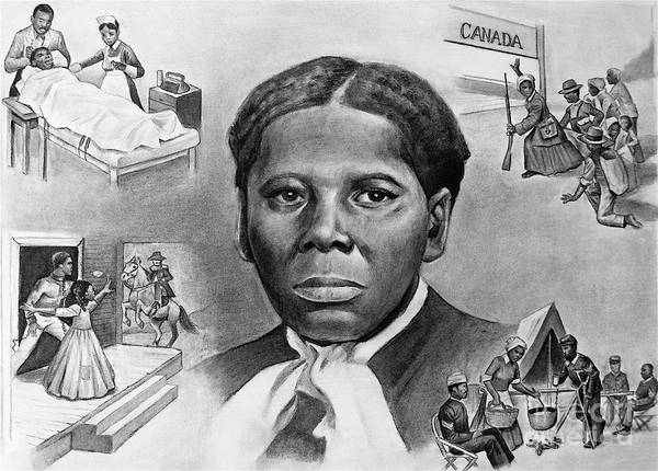 Harriet Tubman Art Print featuring the painting Harriet Tubman by Curtis James