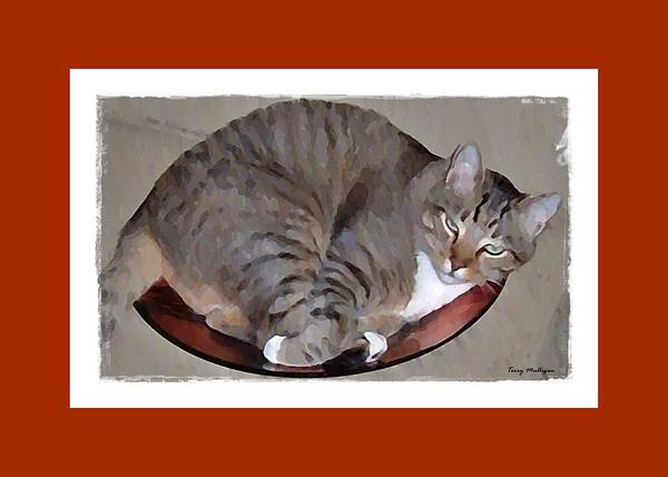 Kitty Art Print featuring the digital art Kitty In A Bowl by Terry Mulligan