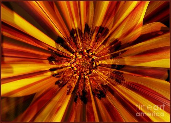 Nature Abstract Art Print featuring the photograph Let Your Light Shine by Carol Groenen