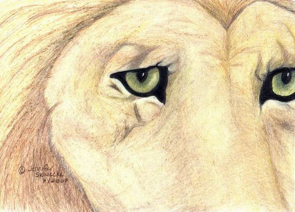 Lion Art Print featuring the drawing Longing by Jennifer Skalecke
