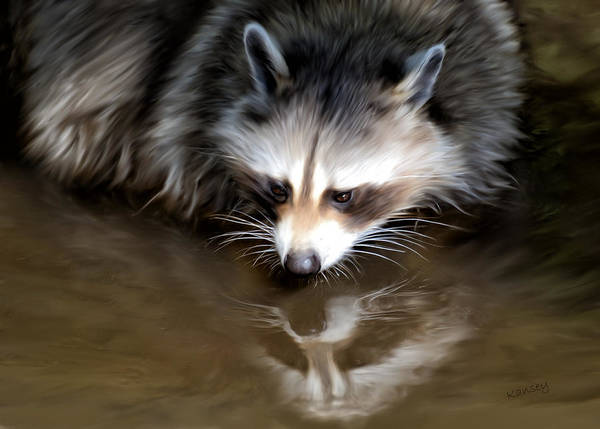 Racoon Art Print featuring the painting Mirror by Johanne Dauphinais