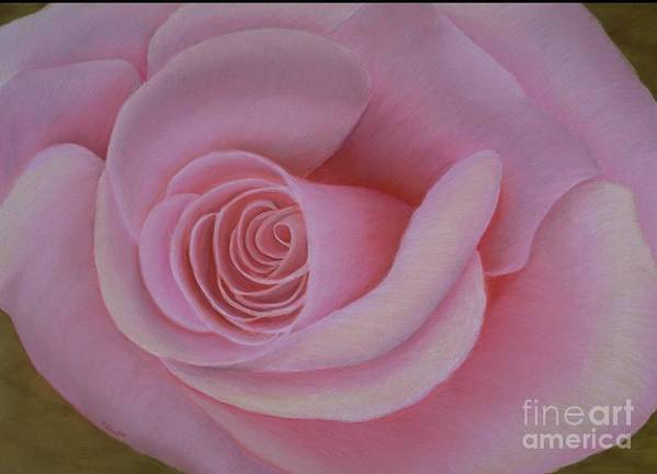 Rose Art Print featuring the painting Pink Blush by Mary Erbert