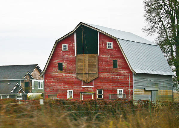 Barn Art Print featuring the photograph Red Country Barn by Liz Santie