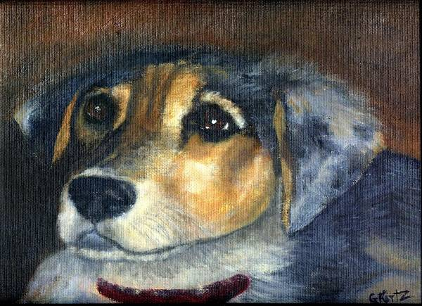 Dog Art Print featuring the painting Roxie by Gail Kirtz