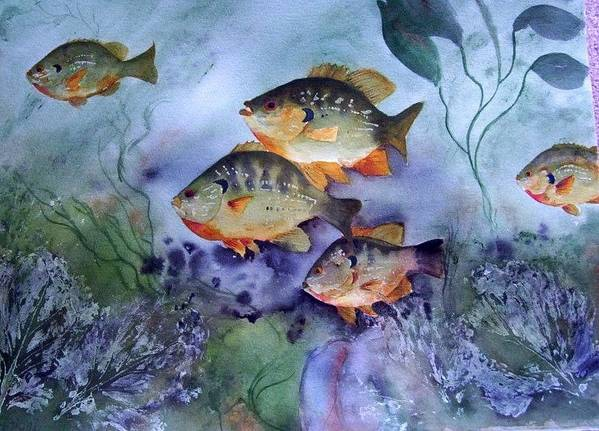 Original Art Print featuring the painting School's Out - Bluegills by Audrey Bunchkowski