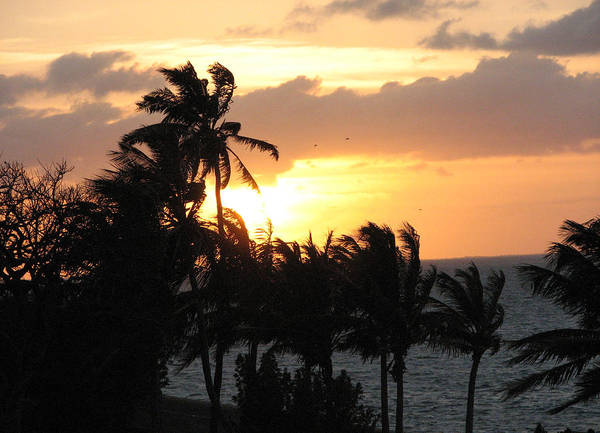 Sunset Art Print featuring the photograph Seven Mile Sunset by Stacey May