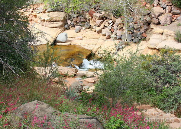 Slide Rock Print featuring the photograph Slide Rock With Pink Wildflowers by Carol Groenen