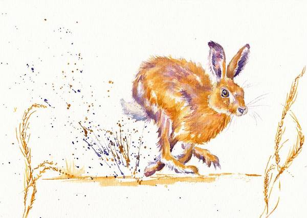 Hare Art Print featuring the painting Splash by Debra Hall